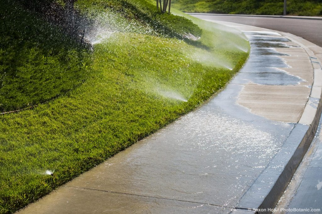 water waste; garden lawn sprinklers running down sidewalk