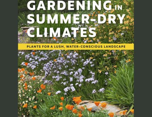 The Book – Gardening in Summer-Dry Climates